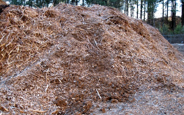 Large pile of mulch