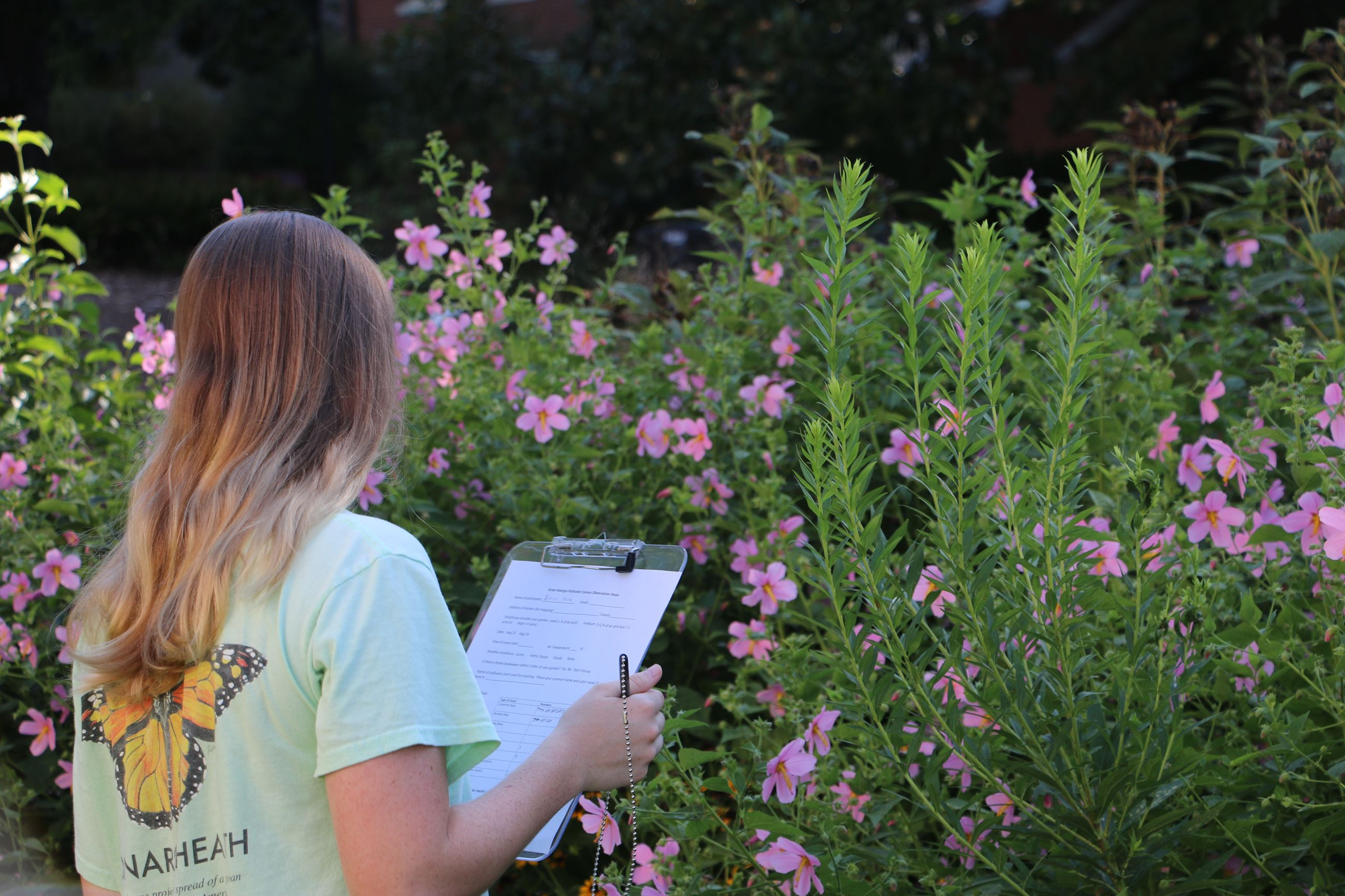 A UGA student conducts research.
